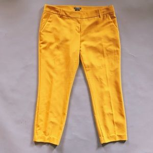 Express Columnist marigold yellow slacks pants 12R